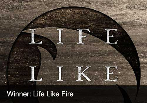 2018 People's Choice of the Year Winner - Life Like Fire
