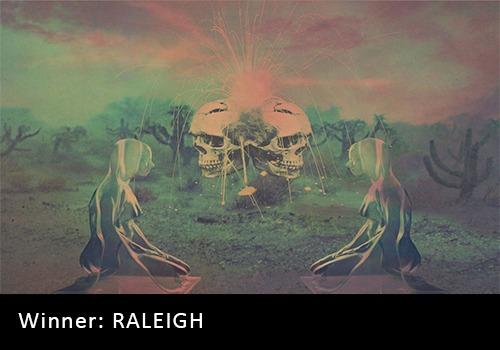 2018 Alternative Recording of the Year Winner - RALEIGH